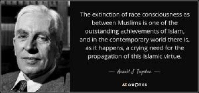 toynbee-islam-race-erosion