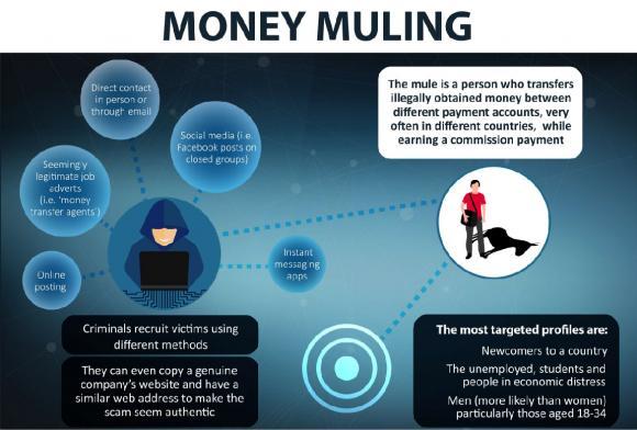 Money Mule Flyers 2016 Europol