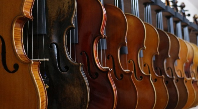 Many violins in a row