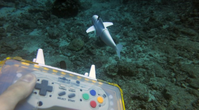 Engineers developed a swimming fish robot to observe marine life