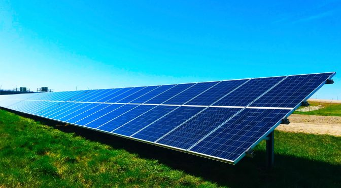 Why Growing Crops under Solar Panels is the cross-sector Synergistic Solution we need on our way to achieving several SDGs