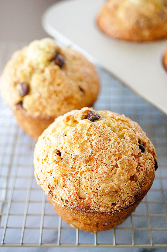 Jumbo bakery style chocolate chip muffins