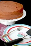 Greek yogurt chocolate layer cake