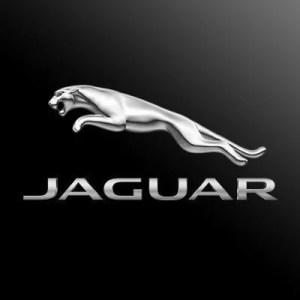 Jaguar Merchandise and Apparel