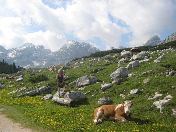 hiking_alta_via_dolomiti_italia