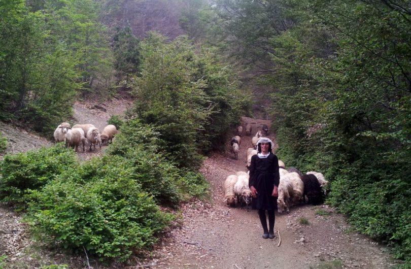 Via_Dinarica_Albania_Wandelen_White_Trail