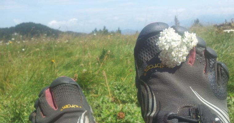 Catching flowers Čvrsnica | Waar zijn je schoenen? | Wandelen op FiveFingers