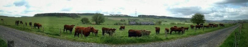 Walking through Wallonia, Xhignesse
