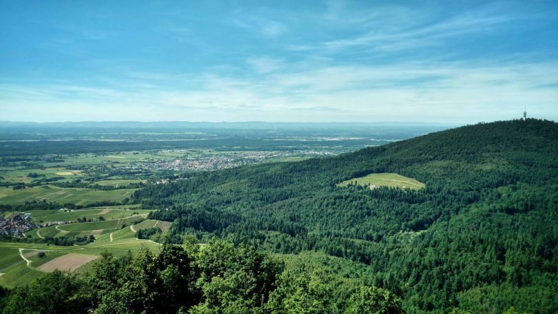 Yburg_view