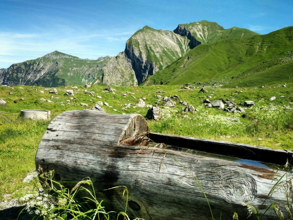 Waterbron_via_alpina_oytal