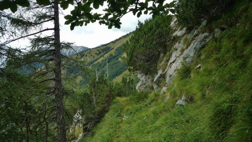 Groen_balkonpad_E7_slovenië