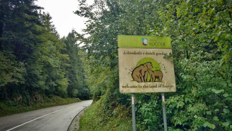Kočevje slovenië, dé beren regio
