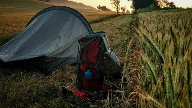 Wildkamperen naast een graanveld in Duitsland