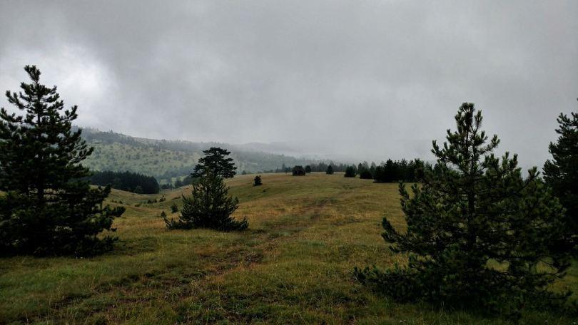 Hills near Zlatibor