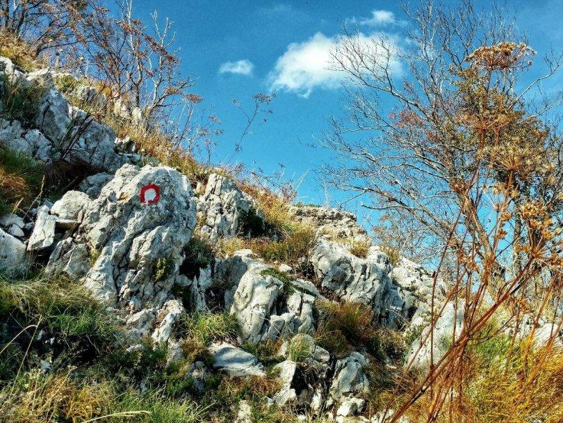 PPT | Day 1: Gorna Biskra - Rumija massif