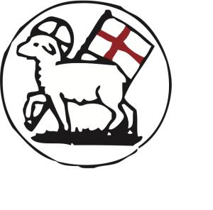 Logo_brodrafors_color (6) (1)-2