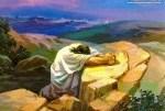 Estamos en oración por la: pequeña comunidad en busca de Jesús, sector 5 parroquia San Pio X. Por sus necesidades.