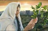 La higuera que no da fruto. Todos los cristianos estamos llamados a ....