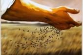 ¿El árbol del conocimiento en el hombre y la mujer, se puede comparar con la parábola del trigo y la cizaña?