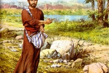 Evangelio San Lucas 8,4-15. Sábado 17 de Septiembre de 2011.