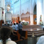 ¡Esta es la fe  de la iglesia católica que profesamos!