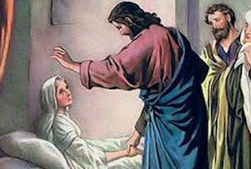 Orar y pedir a Jesús por los enfermos de covid insistentemente.