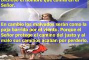 Salmo 1, 1-6. Jueves 7 de Octubre de 2021.  Nuestra Señora del Rosario.