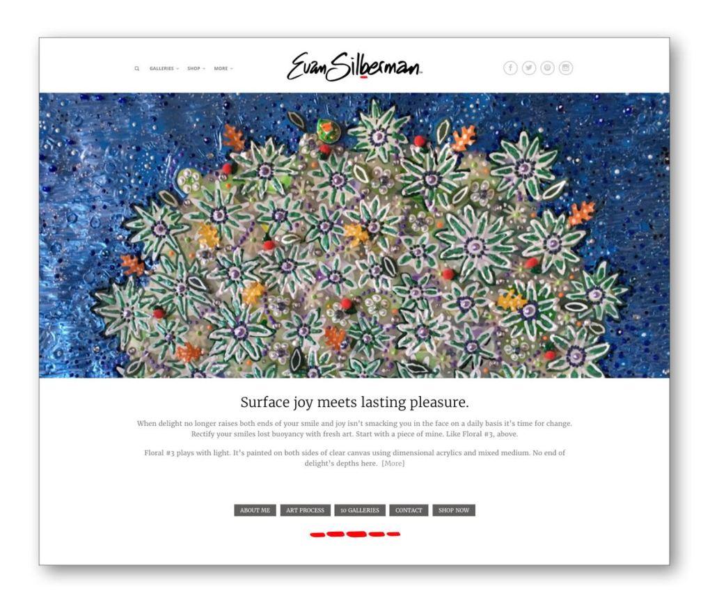 Evan Silberman Art Website