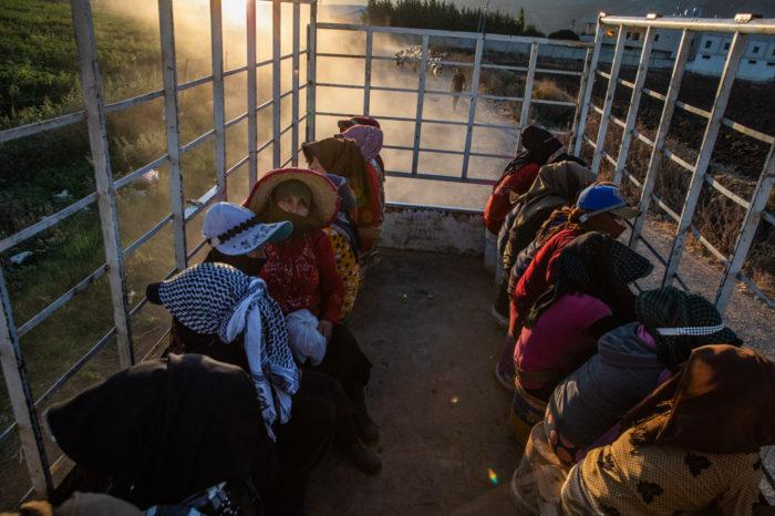 Refugiadas sirias de varios asentamientos informales del Valle de la Bekaa son trasladadas por el Shawish en camión al campo donde trabajarán como jornaleras.