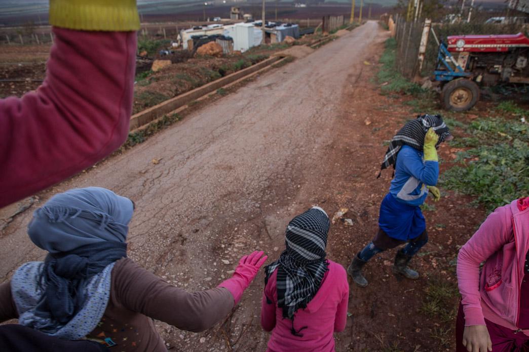 Jóvenes jornaleras bajan del camión que las traslada del campamento al campo.
