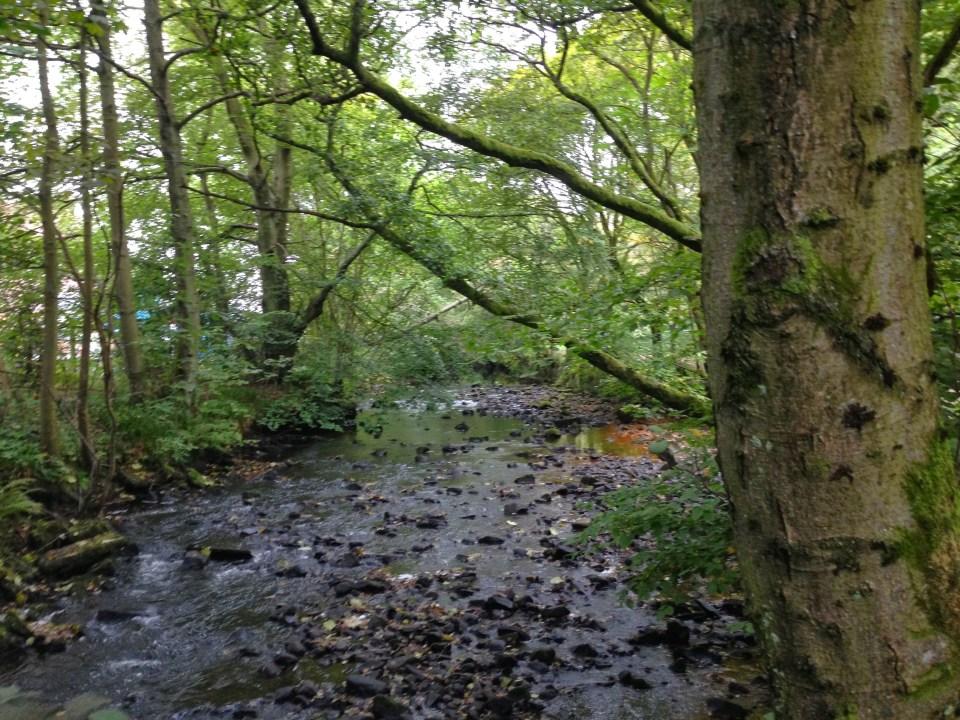 A Small Stream In Minlgavie