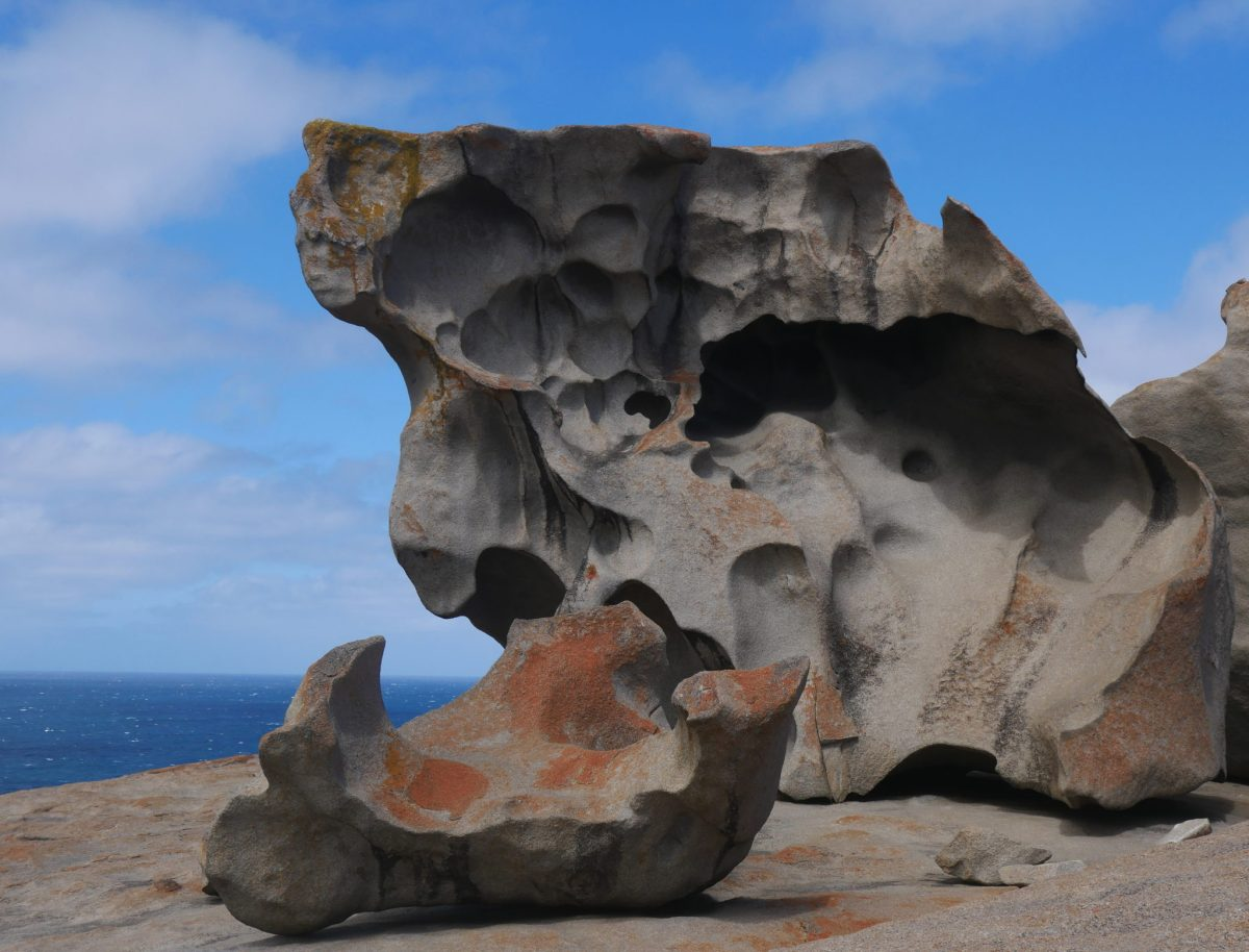 1 semaine de Helpx à Kangaroo Island