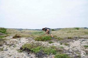 Kazz Wild adventures Jersey