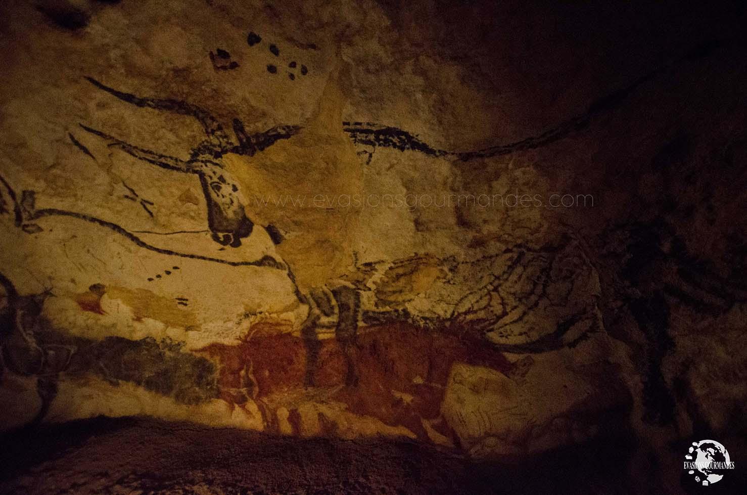 Grotte de Lascaux II