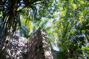 Jardin botanique Campeche