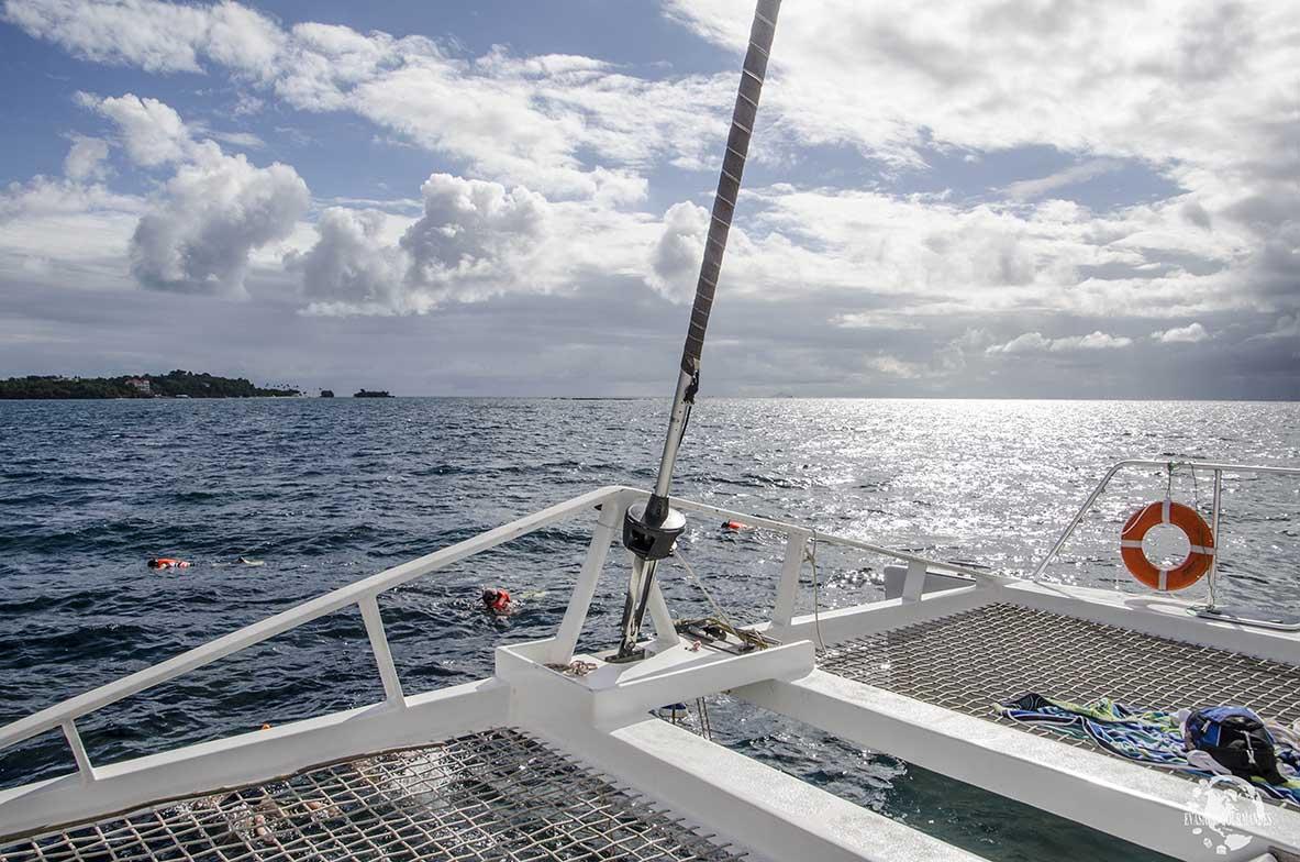 Catamaran Samana