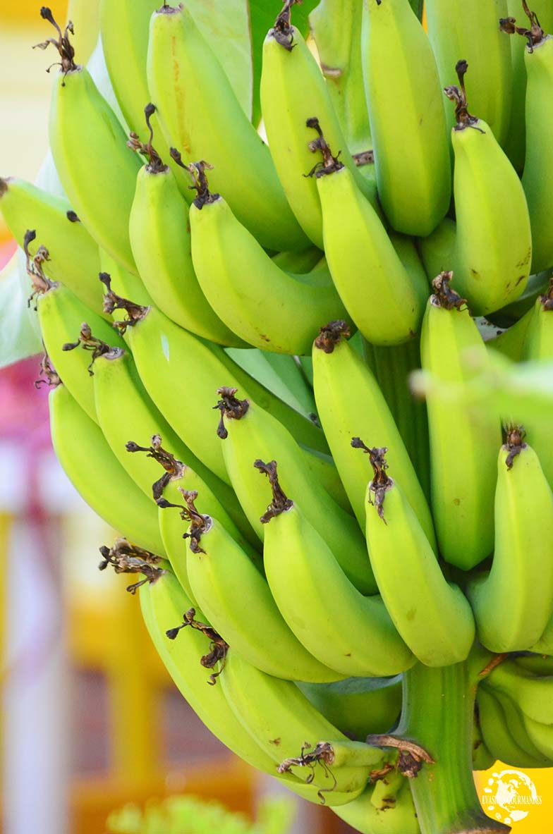 bananes Martinique