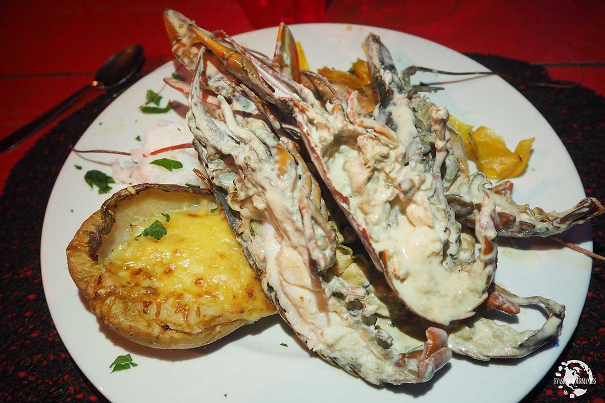 Langouste Martinique