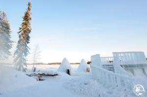 Arctic Wild Ice