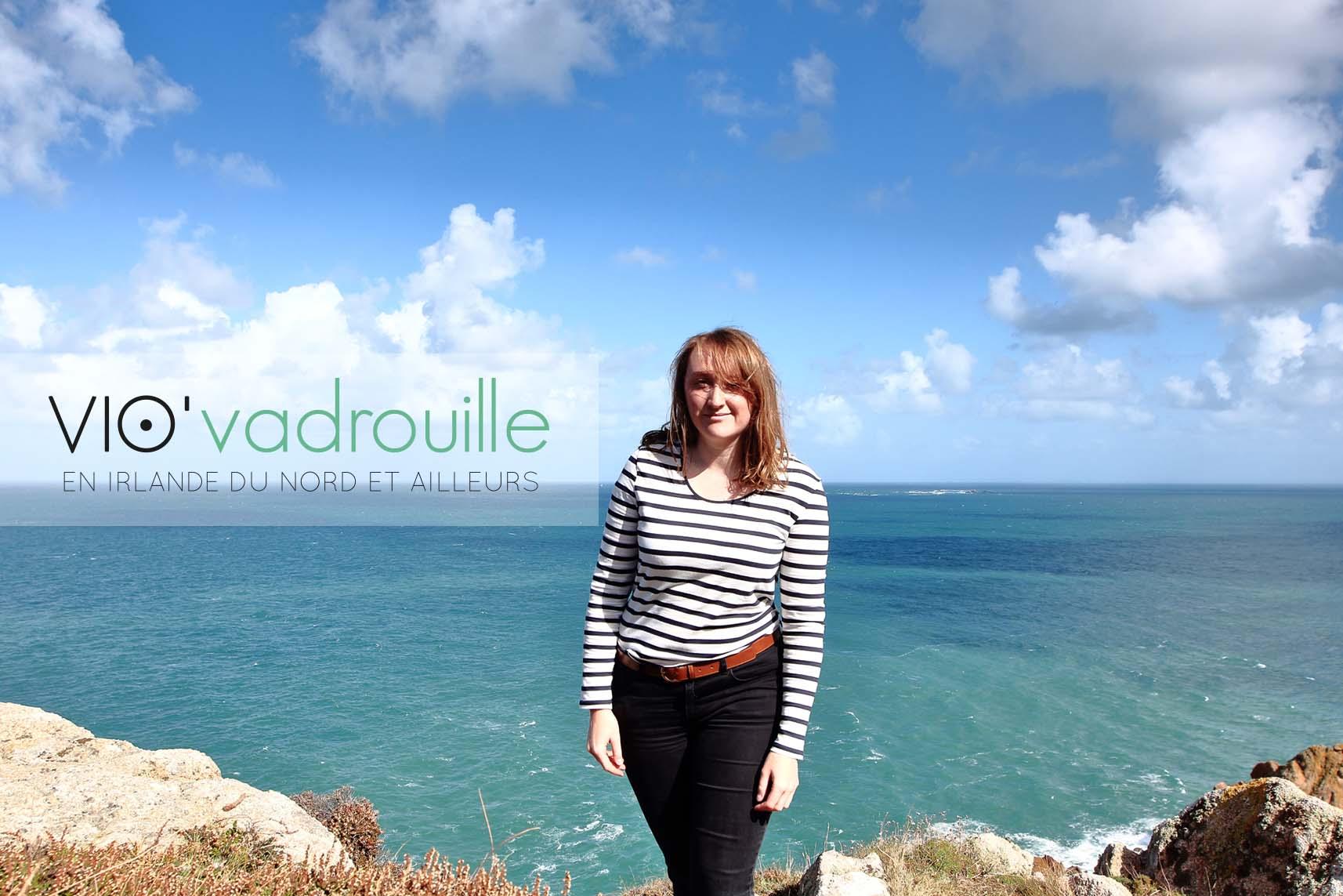 Expatriation en Irlande Vio Vadrouille