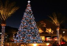 10-places-to-visit-this-christmas-