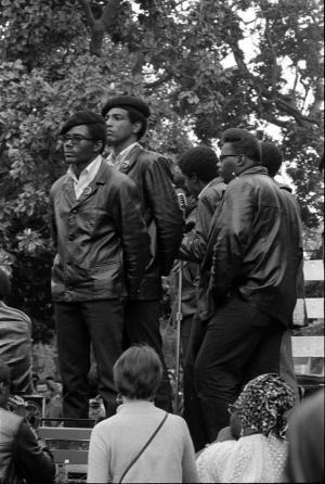 Black-Panthers-016-12
