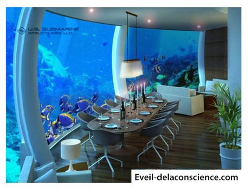 3_Vivre au fond de l'océan, il y a une maison pour ça !