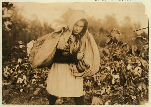 20_Ramasseuse de coton à Pottawotamie County, Oklahoma