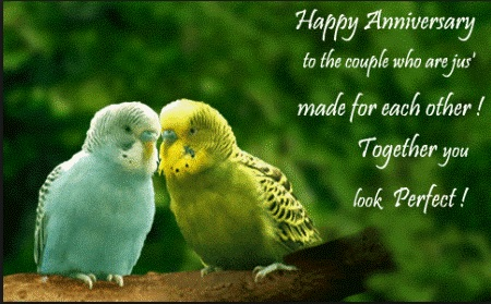 Happy Marriage Anniversary Quotes Entrancing Happy Wedding Anniversary Wishes To A Couple  Events Greetings