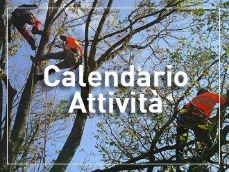 calendario formazione3t