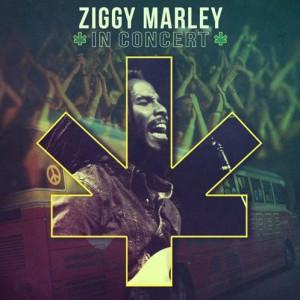ziggy-marley-in-concert