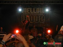 mellow-mood-jacob