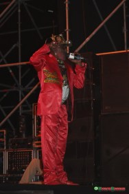 Lee-Perry-6