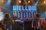 mellow-mood-live-flog